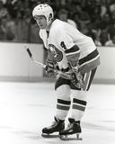 Jean Potvin. New York Islanders defenseman Jean Potvin. (image taken from a b&w negative Royalty Free Stock Images