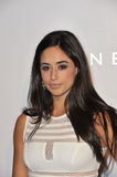 Jeanine Mason Royalty Free Stock Images