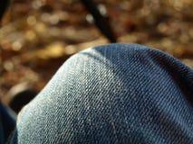Jeans Royaltyfria Bilder