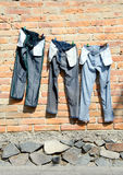 Jeans on clothesline Stock Images