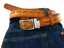 Jeans with crocodile belt Stock Image