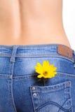 Jeans femminili con il fiore in casella Fotografia Stock
