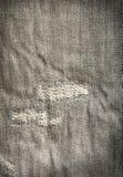 Jeans getragen Lizenzfreie Stockfotografie