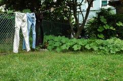 Jeans sulla riga di vestiti. fotografia stock libera da diritti