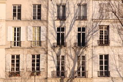 Aligned windows in Paris Royalty Free Stock Photo