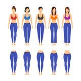 Jeans Verschillende Model en Pasvorm voor Vrouwen Vector royalty-vrije illustratie