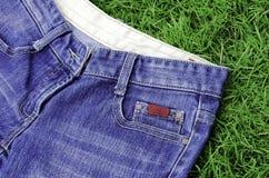 Jeansgräsmatta Arkivbild