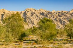 Jebel Hafit dichtbij Al Ain in de V.A.E royalty-vrije stock afbeelding