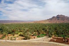 Jebel Kissane und palmeraie. Agdz, Souss-Massa-Draâ, Marokko Stockfoto