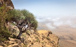 Jebel Samhan, Oman. Scenic view from Jebel Samhan - an elevated plateau near Salalah, Oman stock images