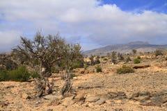 Jebel Shams. Grand Canyon of Oman stock photography