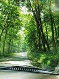 Jechać na drzewo prążkowanej drodze zdjęcia royalty free