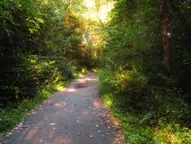 Jechać na rowerze & Jogging ścieżka Obrazy Stock