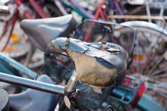 jechać na rowerze starego Zdjęcie Royalty Free