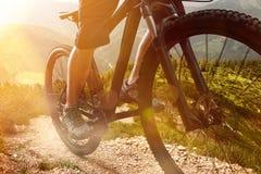 jechać na rowerze target1669_0_ cyklisty głębii pola ostrości lasu ręk halną perspektywy płyciznę Obrazy Stock