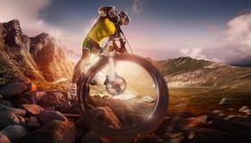 jechać na rowerze target1669_0_ cyklisty głębii pola ostrości lasu ręk halną perspektywy płyciznę Zdjęcia Stock
