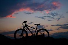 jechać na rowerze target1669_0_ cyklisty głębii pola ostrości lasu ręk halną perspektywy płyciznę Obraz Stock
