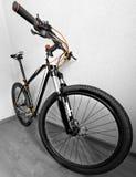 jechać na rowerze target1669_0_ cyklisty głębii pola ostrości lasu ręk halną perspektywy płyciznę Fotografia Royalty Free