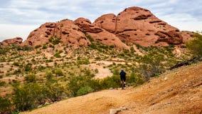 Jechać na rowerze w dół czerwonego piaskowa buttes Papago park, zdjęcia royalty free