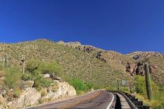 Jechać w górę góry Lemmon w Tucson Arizona Obraz Royalty Free