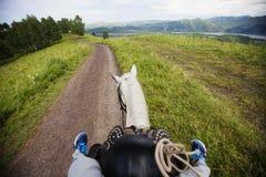 Jechać konia na wiejskiej drodze Widok od konia Zdjęcia Royalty Free