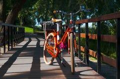 Jechać na rowerze na moscie w lato parku obraz stock