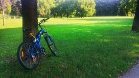 Jechać na rowerze przy parkiem w lato czasie Obrazy Royalty Free
