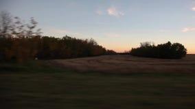 Jechać past wiejskich prerii pola zdjęcie wideo