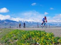 Jechać w Xinjiang Tianshan obszarze trawiastym Fotografia Royalty Free