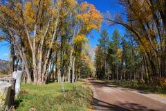 jedź na obszarach wiejskich Zdjęcia Stock