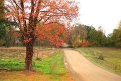 jedź na obszarach wiejskich fotografia stock