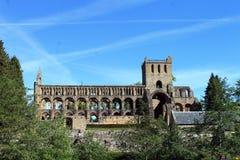 Jedburgh修道院 免版税图库摄影