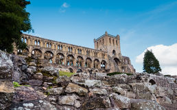 Jedburgh修道院,苏格兰 图库摄影