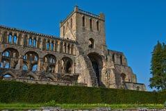 Jedburgh Abbey Arkivbild