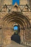 Jedburgh Abbey Royaltyfria Bilder