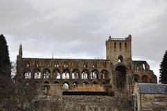 Jedburgh Abbey Ruins Stock Photo
