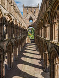 Jedburgh Abbey, Scotland Stock Images