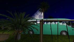Πάρκο στην καρδιά Jeddah με με τη χλόη και τους φοίνικες τη νύχτα απόθεμα βίντεο