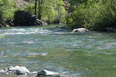 Jedediah Smith River. Beautiful River in Northern California Stock Photography