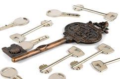 Jeden ampuła i mnóstwo różni klucze Zdjęcie Royalty Free