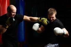 Jeden bokser robi nokautowi obrazy royalty free