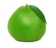 Jeden cały zielony pomelo (odizolowywający) Obrazy Stock