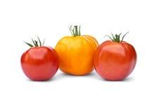 jeden czerwieni pomidorów dwa kolor żółty Zdjęcie Royalty Free