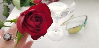 Jeden czerwieni róża jest ubranym srebro w żeńskich palcach dzwoni z białym dużym kamieniem obrazy stock
