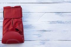 Jeden czerwona bokserska rękawiczka Zdjęcie Stock