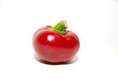 Jeden czerwoni pieprze dalej nad bielem Obraz Royalty Free