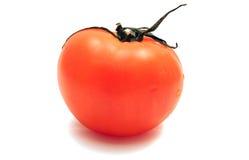 jeden czerwony pomidor Zdjęcie Royalty Free