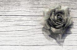 Brąz róża Zdjęcie Royalty Free