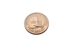 Jeden dolarowa złocista moneta Zdjęcia Royalty Free