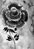 Jeden duży wzrastał w czarny i biały Obraz Stock